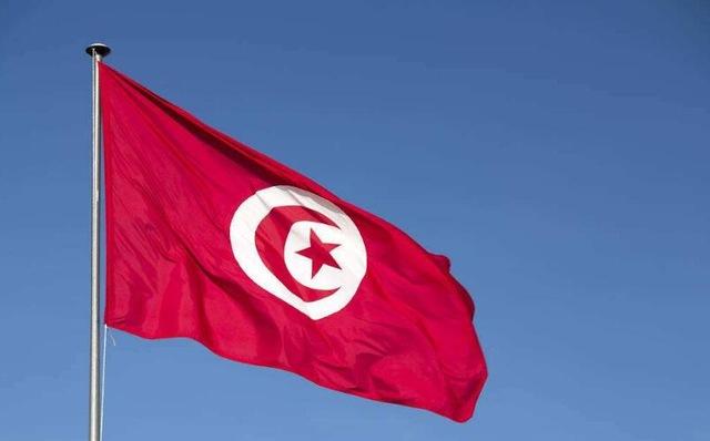 accessoire jardin tunisie