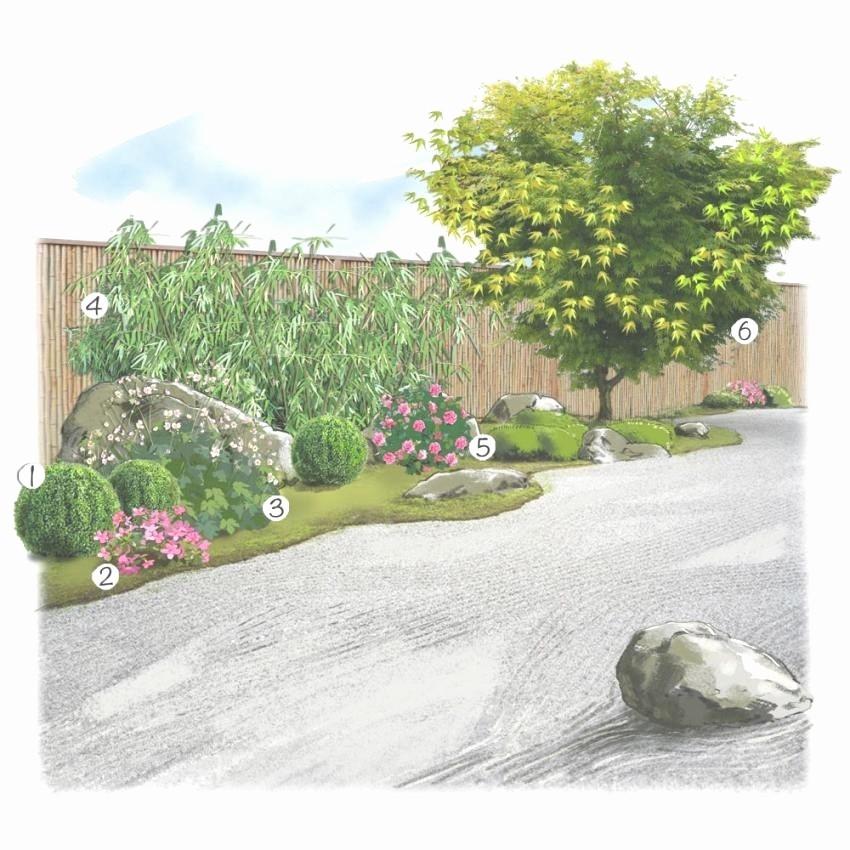 amenagement jardin a moindre cout