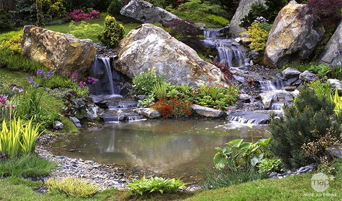 Amenagement jardin bassin d 39 eau le sp cialiste de la - Amenagement bassin de jardin ...