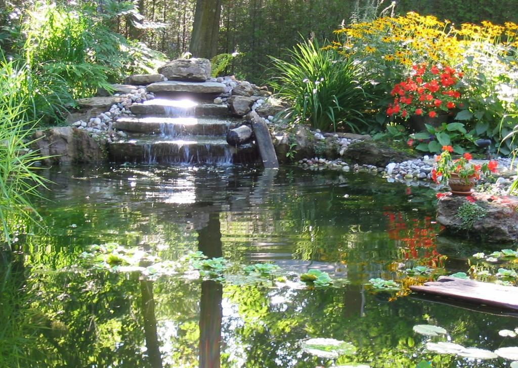 amenagement jardin bassin d\'eau - le spécialiste de la décoration ...