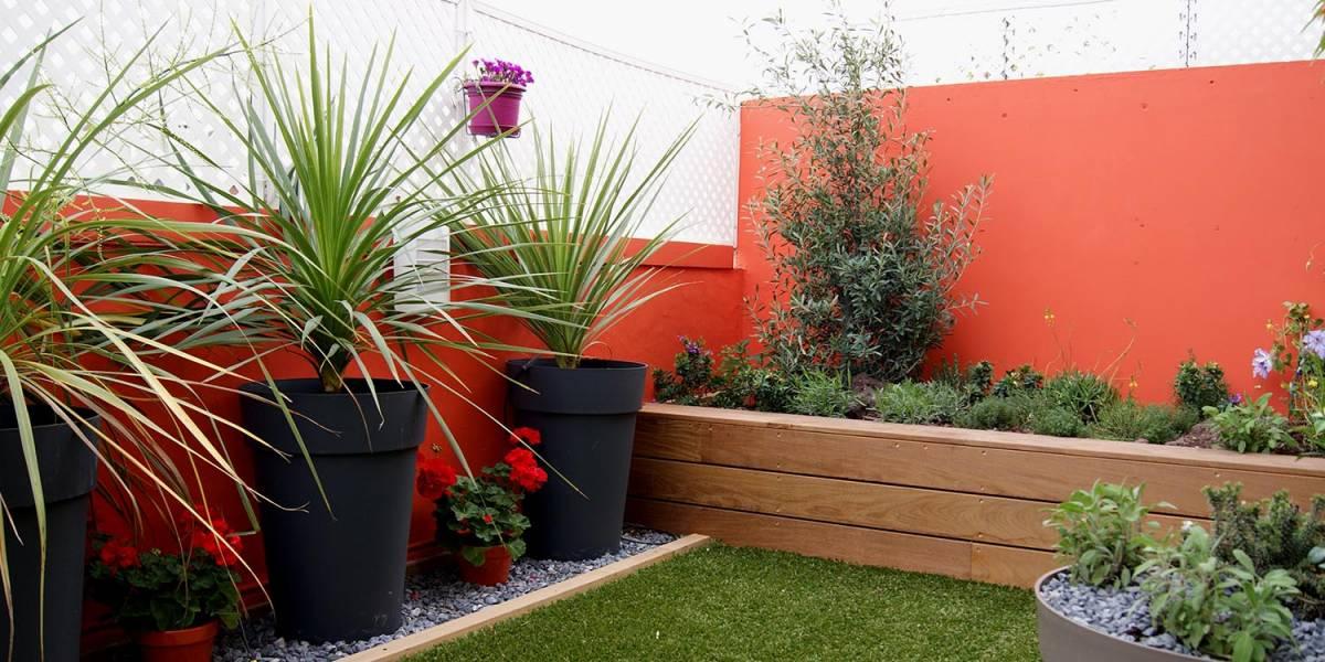 Attrayant Amenagement Jardin Contre Un Mur