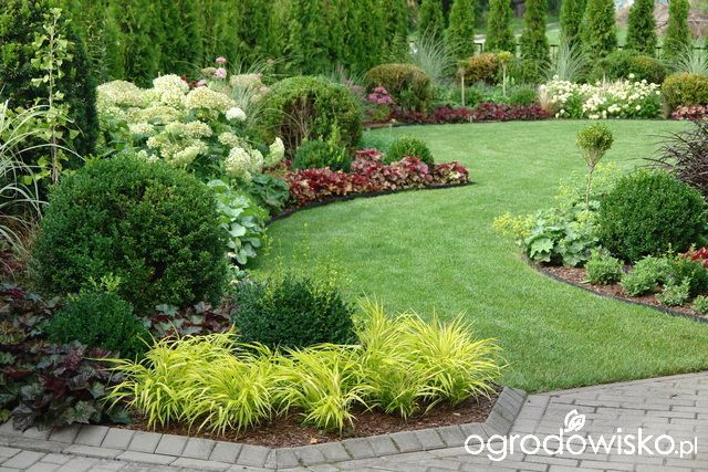 amenagement jardin forum