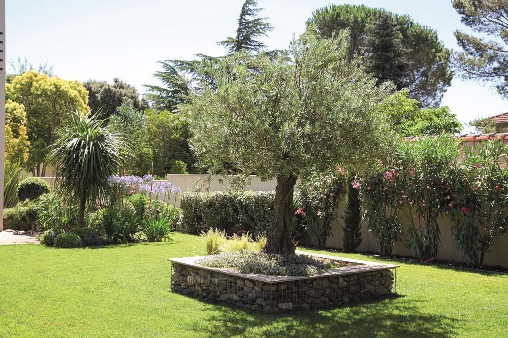 amenagement jardin olivier le sp cialiste de la. Black Bedroom Furniture Sets. Home Design Ideas