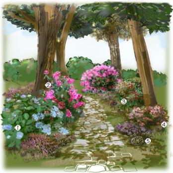 amenagement jardin sous-bois