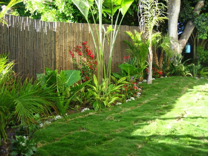amenagement jardin tropical