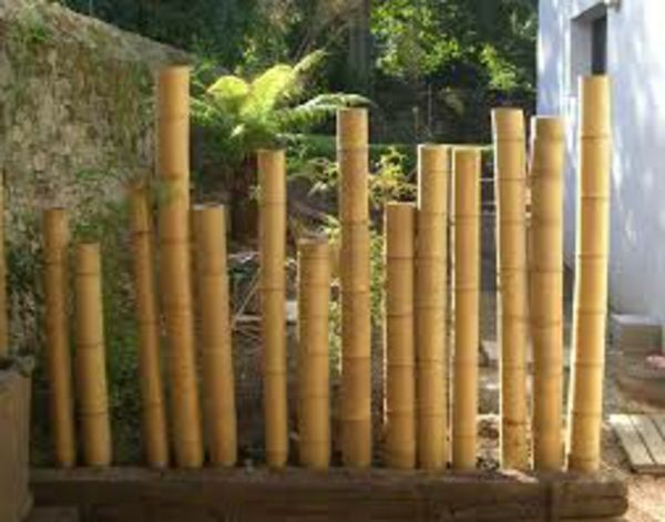 decoration exterieur bambou - le spécialiste de la décoration extérieur
