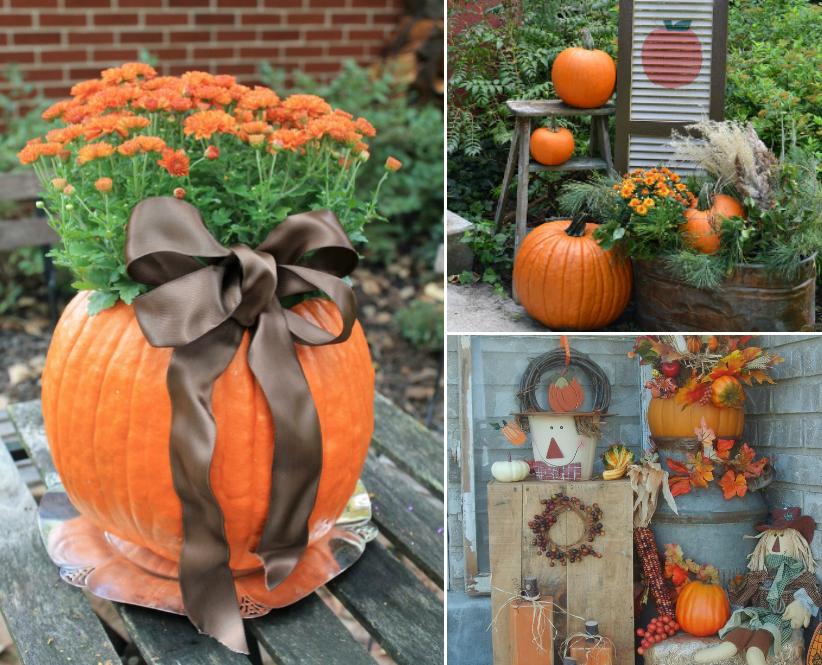 decoration exterieur d 39 automne le sp cialiste de la. Black Bedroom Furniture Sets. Home Design Ideas