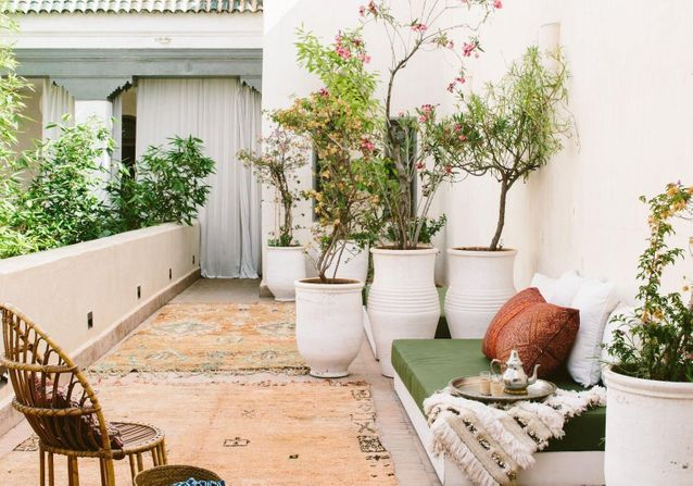 decoration terrasse plantes