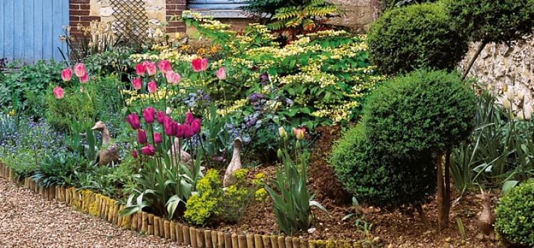 idee jardin bordure