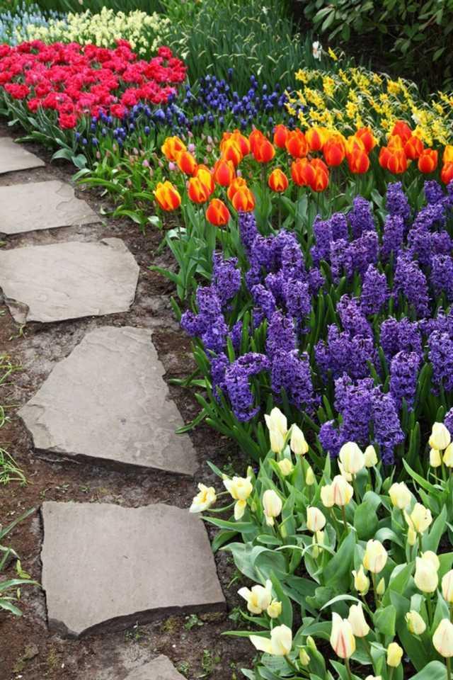 idee jardin de fleurs - le spécialiste de la décoration ...