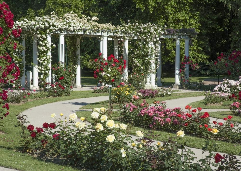 idee jardin fleuri toute l'annee