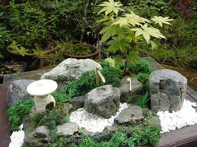idee jardin japonais miniature - le spécialiste de la décoration ...