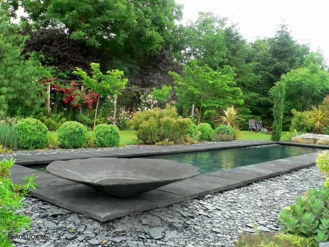 idee jardin palmier