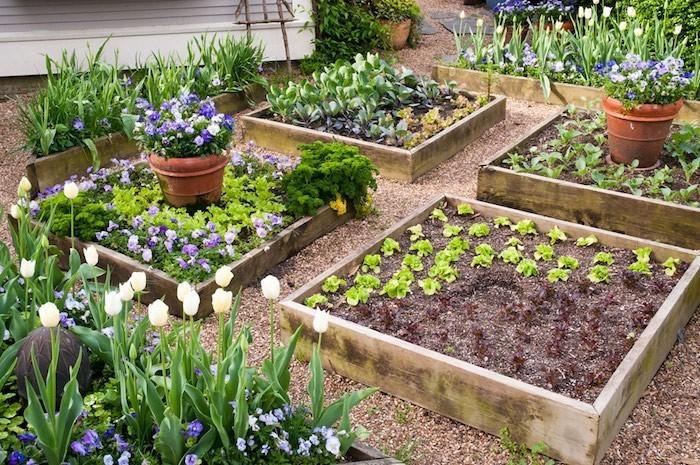 idee jardin potager - le spécialiste de la décoration extérieur