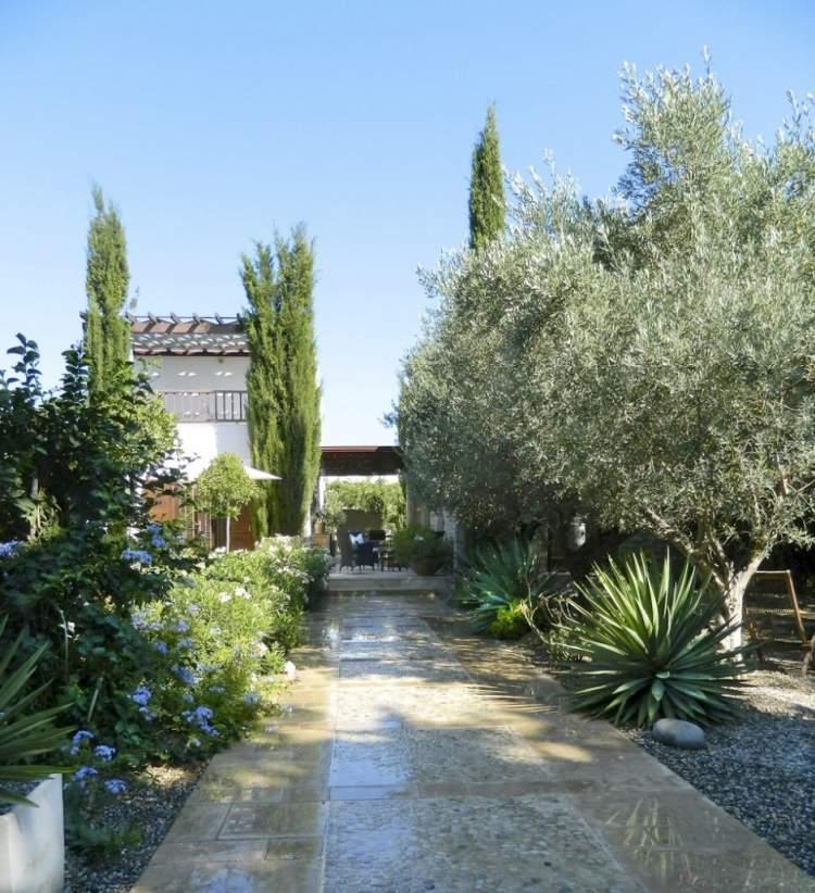 idee jardin sud