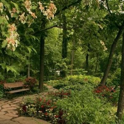 idee jardin ombre